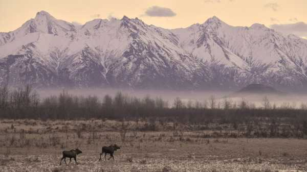 What Will Alaska Be Without Winter?