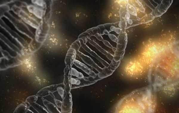 'New I-Motif DNA Can Possibly Turn Genes On and Off' - Professor