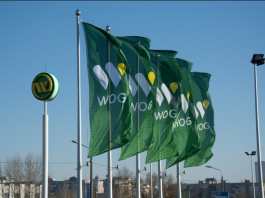 WOG network of gas filling complexes launches IBox terminal for fuel payments